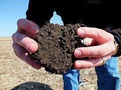 Image Credit: NRCS Soil Health