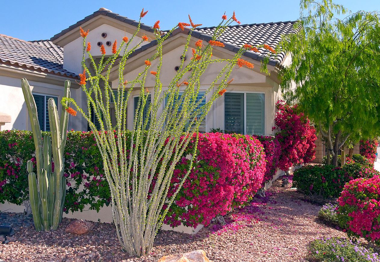 Landscaping for Your Climate Zone