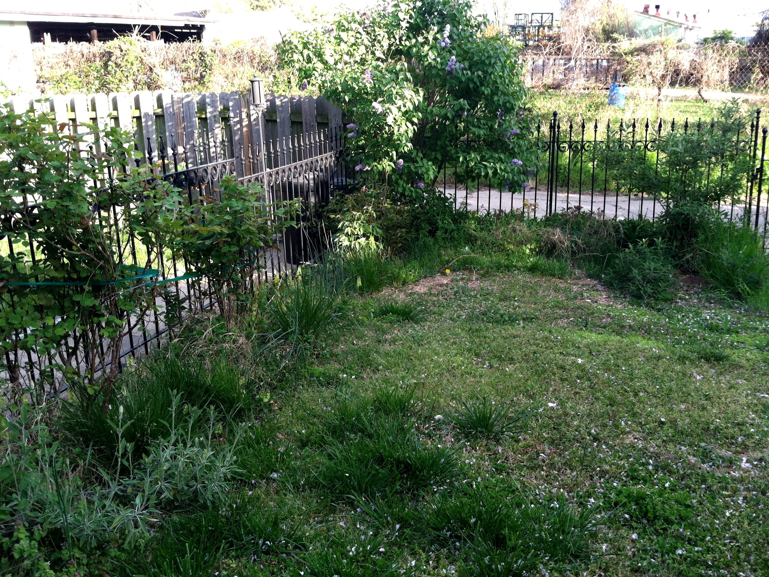 Three steps to prepare your overgrown yard for landscaping for How to landscape a garden