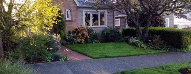spruce up landscaping