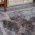 clean carpet bugs