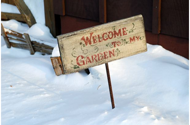 diy winter garden