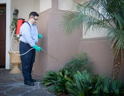 importance-of-building-and-pest-inspection