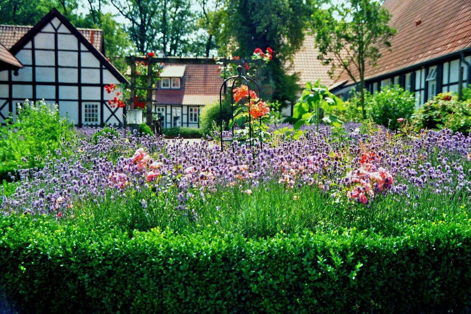 Gardening 101: Six Helpful Tips For Beginner Gardeners