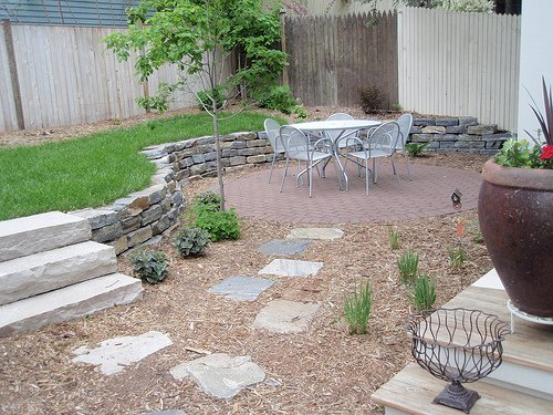 Clean Backyard 5 easy steps to clean out your backyard