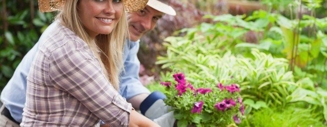 Cold Weather Gardening Tips 2