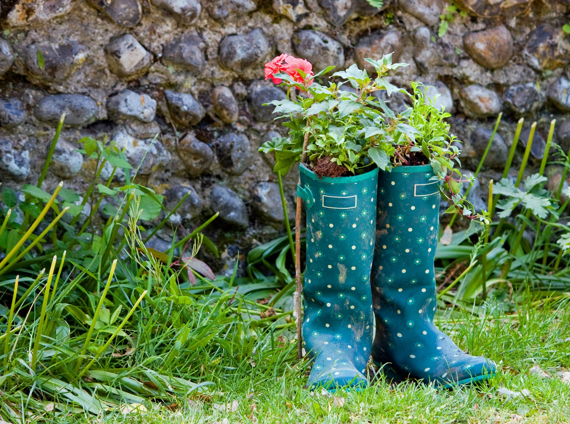 8 Upcycling Ideas for Your Garden
